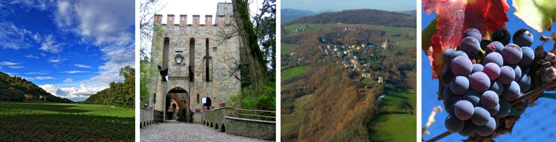Paesaggio diurno, Castello di Gropparello entrata, Veduta aerea Gropparello, Grappolo di uva
