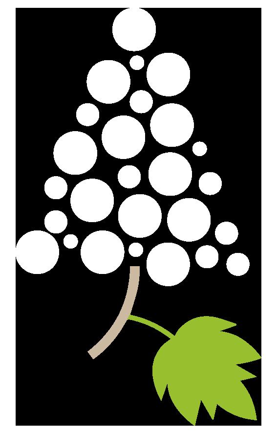 albero-natale-strada-dei-vini-piacenza